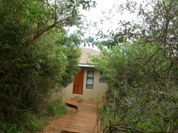 SAR-Near Hluhluwe NP: Our cottage (with geco and toilet frog)
